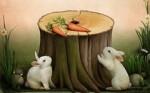 Кролик коллега