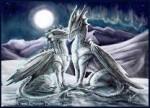 Драконы супруги