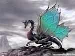 Петух с Драконом