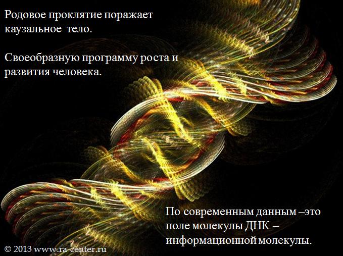 Вся информация о вашем Роде так же хранится в базе Вселенной